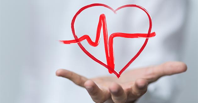 心血管機能の負担軽減