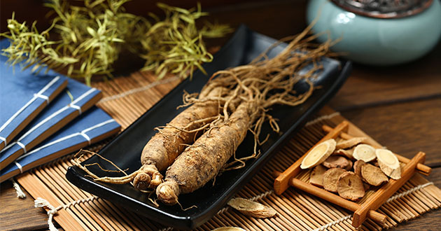 ginseng on plate-630