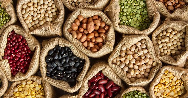 タンパク質が減量をサポートしてくれる