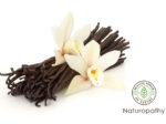 バニラ(Vanilla)
