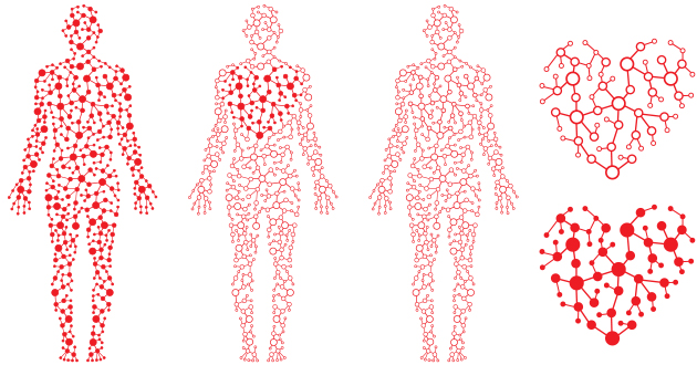 ソルガムは、血行促進に効果的