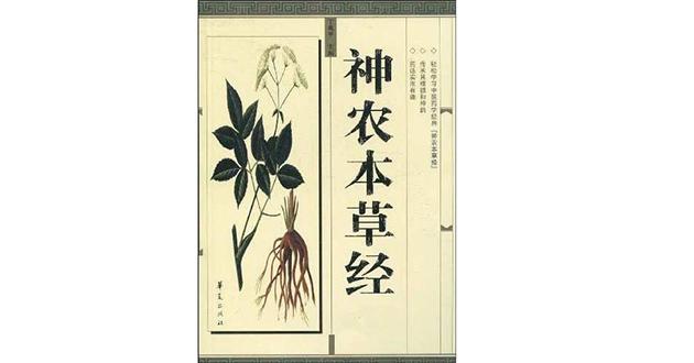 黄連は中国伝統の漢方薬で古来より使われてきた生薬