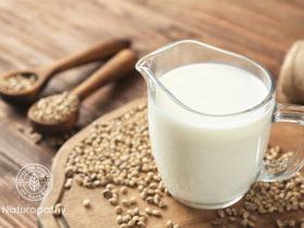 ヘンプミルク