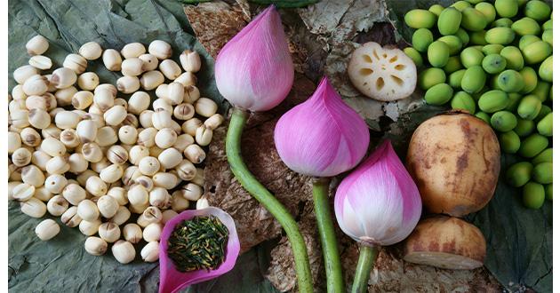 lotus flower_seed_tea-630