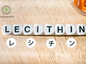 レシチンの効果