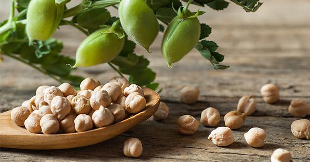 ひよこ豆で作るビーガンバーガー
