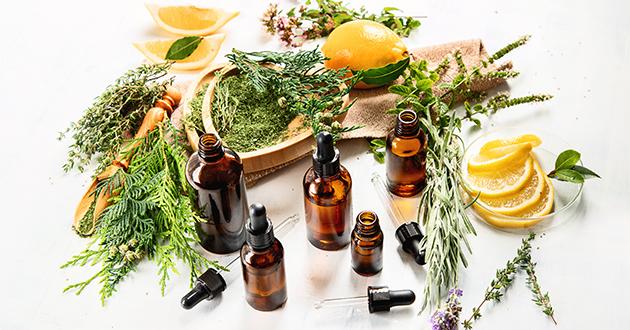 bottles of essential oils-630アロマテラピー