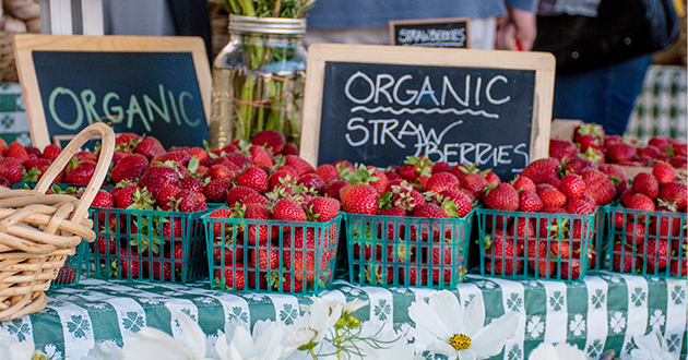 strawberries at farmers' market-630