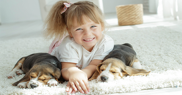 a little girl and two dogs