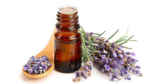 lavender eo 092121